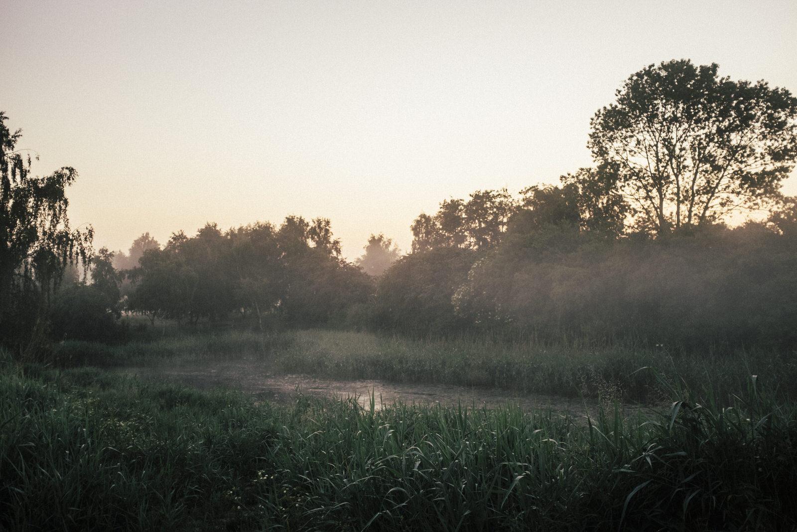 Morgens um 4... zwischen den Feldern