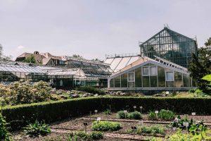Lieblingsorte #1: Der Botanische-Garten in Greifswald